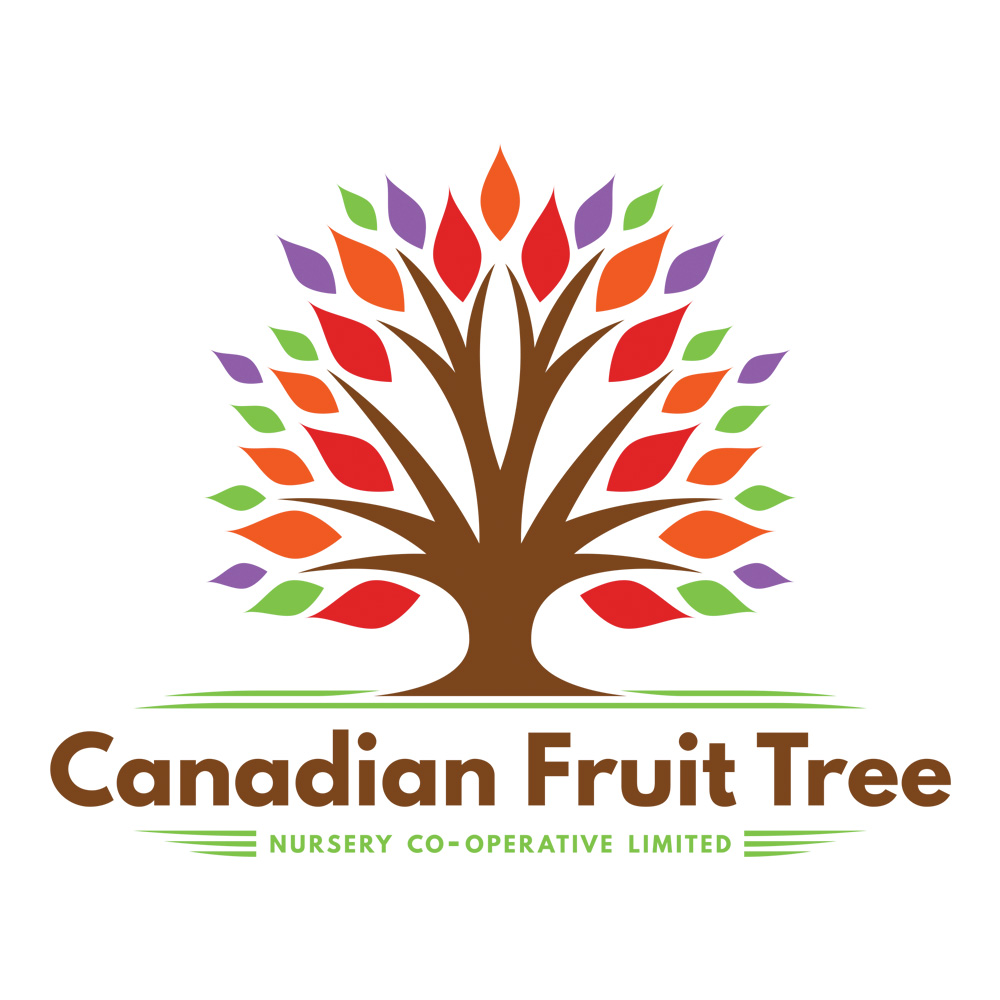 Canadian Fruit Tree Logo